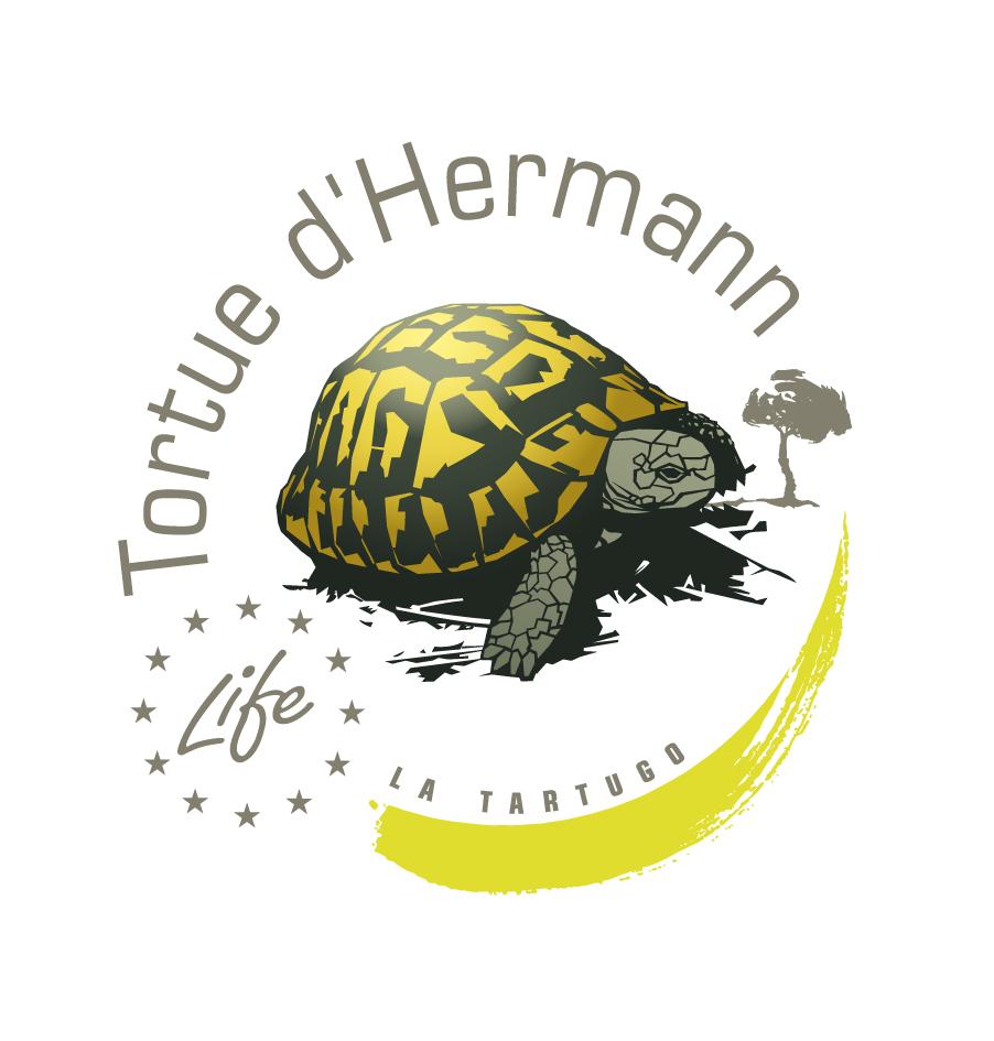 Logo_TH_sceau_quadri.jpg