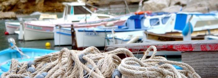 Filets de pêche, calanque de Morgiou (13) - Copyright : ARPE PACA
