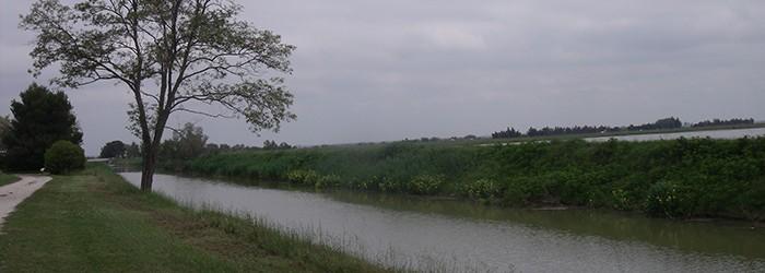 Canal d'irrigation de Rousty, BdR - 2012 Copyright : D. GATANIOU/ARPE