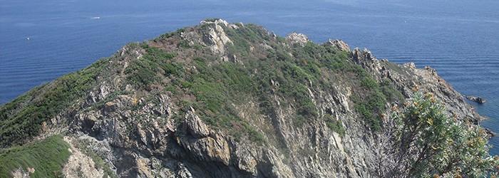 Réserve intégrale Cap Lardier, site Cdl - Copyright : D. GATANIOU/ARPE