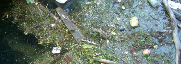 Macropollution des cours d'eau ©ARPE PACA
