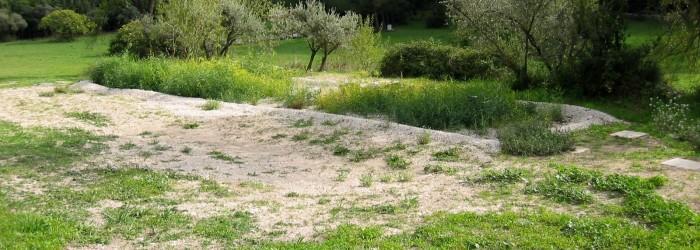 STEP Subterra : filière de lits de roseaux - Copyright : ARPE PACA