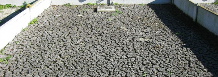 Séchage des boues d'une station d'épuration - Copyright : ARPE PACA