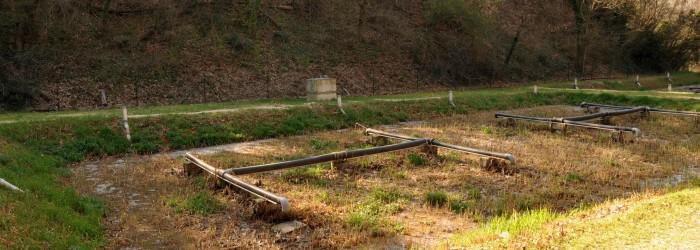 Station d'épuration du Roussillon (84) : filière de lits de roseaux ©ARPE