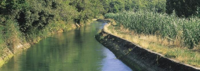 Irrigation canal gravitaire (84) - Copyright : Agence de l'Eau RMC
