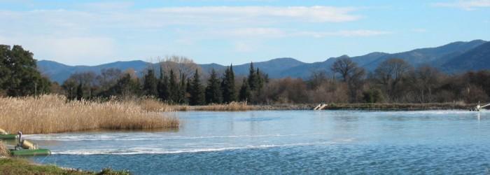Le lagunage : une filière de traitement des eaux usées - Copyright : ARPE