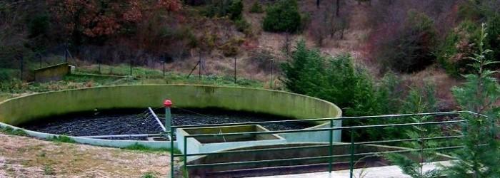 Lit bactérien d'une station d'épuration - Copyright : ARPE PACA